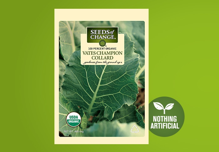 Seeds of Change® Organic Vates Champion Collard Seeds Front of Pack
