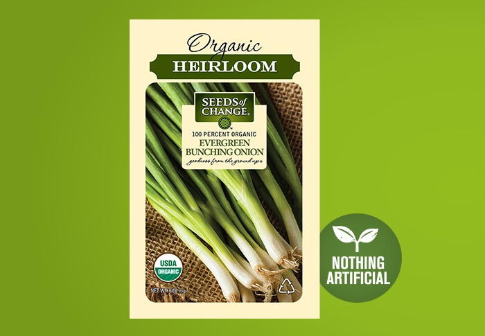 Seeds of Change® Organic Evergreen Bunching Onion Seeds Front of Pack
