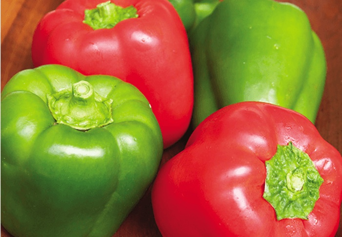 Seeds of Change® Organic Cal Wonder Red Bell Pepper Seeds plant