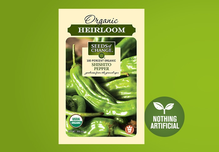 Seeds of Change® Organic Shishito Pepper Seeds Front of Pack