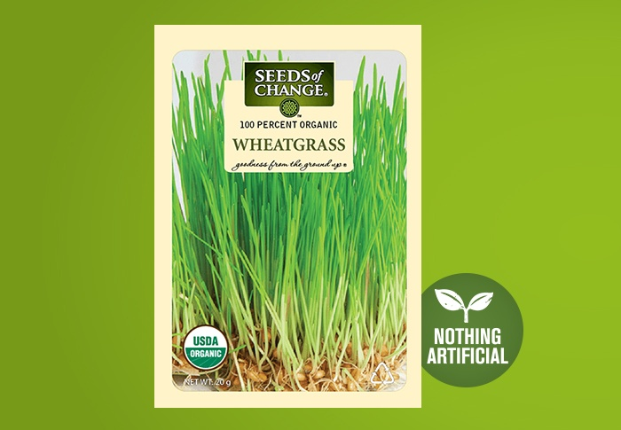 Seeds of Change® Organic Wheatgrass Seeds Front of Pack