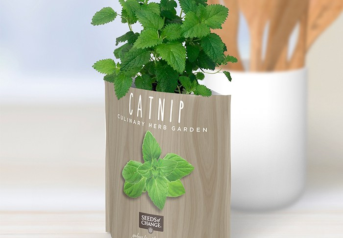 Seeds of Change® Organic Catnip Garden in a Pouch plant