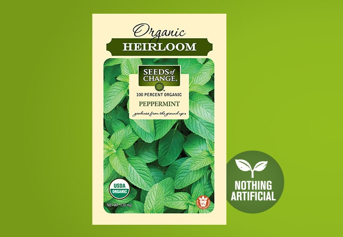 Seeds of Change® Organic Peppermint Seeds Front of Pack