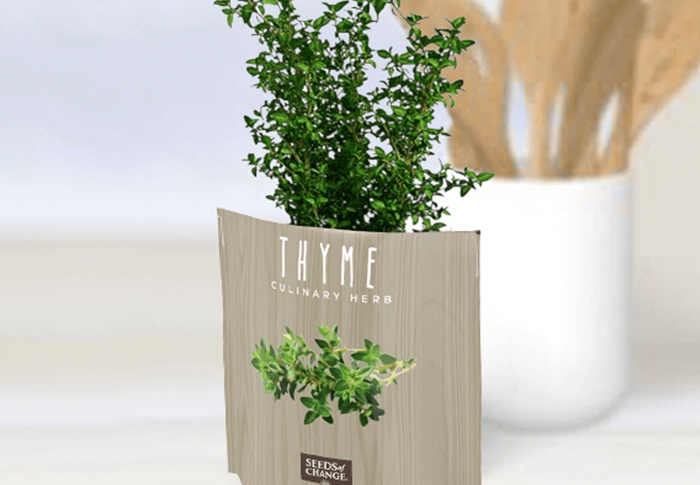Seeds of Change® Organic Thyme Garden in a Pouch plant