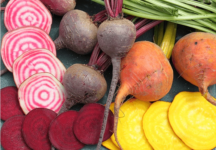 Seeds of Change® Organic Colorful Beet Seeds plant