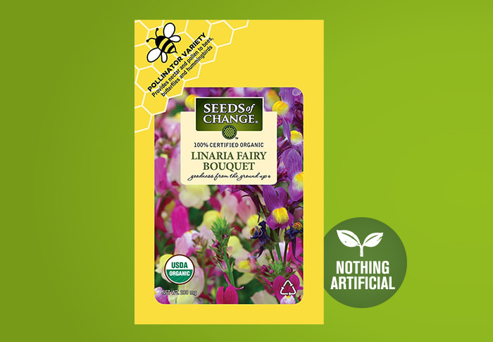 Seeds of Change® Linaria Fairy Front of Pack